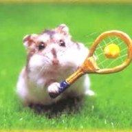Tennis Sam